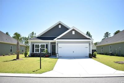 Myrtle Beach Single Family Home For Sale: 1616 Palmetto Palm Dr.