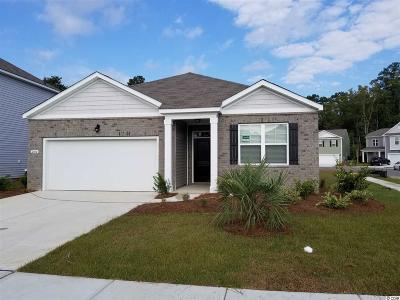 Myrtle Beach Single Family Home For Sale: 2804 Eclipse Dr.