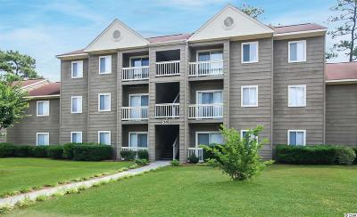 Conway Condo/Townhouse Active Under Contract: 240-B Myrtle Greens Dr. #240-B