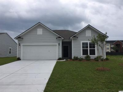 Myrtle Beach Single Family Home For Sale: 4128 Alvina Way