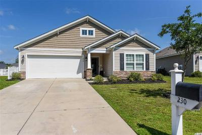 Myrtle Beach Single Family Home For Sale: 230 Sea Turtle Dr.