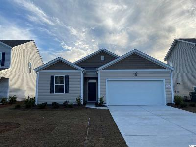 Myrtle Beach Single Family Home For Sale: 916 Laurens Mill Dr.