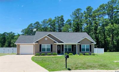 Aynor Single Family Home For Sale: 249 Blue Jacket Dr.