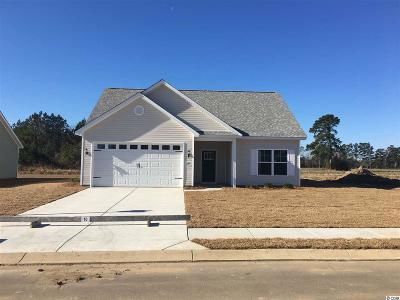 Conway Single Family Home For Sale: 236 Maiden's Choice Dr.