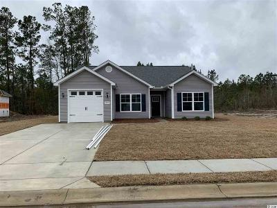 Conway Single Family Home For Sale: 252 Maiden's Choice Dr.