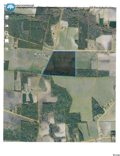 Aynor Residential Lots & Land For Sale: Tbd Edwards Rd.