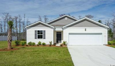 Conway Single Family Home For Sale: 336 Carmello Circle