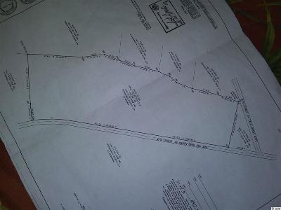 Nichols SC Residential Lots & Land For Sale: $388,150