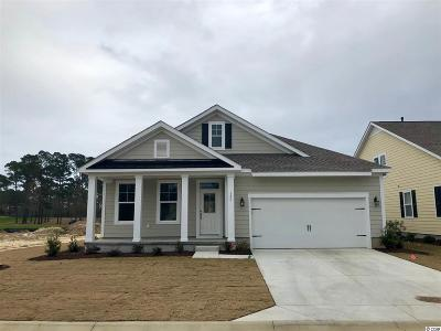 Murrells Inlet Single Family Home For Sale: 153 Champions Village Dr.