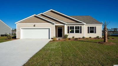 Conway Single Family Home For Sale: 371 Carmello Circle