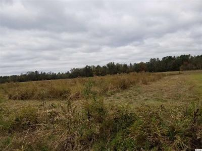 Residential Lots & Land For Sale: Tbd S Highway 747