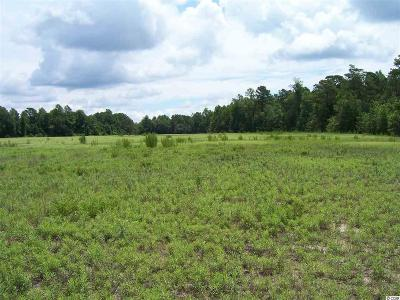 Loris Residential Lots & Land For Sale: T.b.d. Highway 348