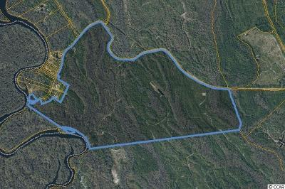Horry County Residential Lots & Land For Sale: Black Island Rd.