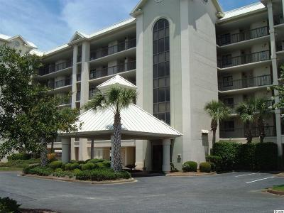 Georgetown County Condo/Townhouse For Sale: 709 Retreat Beach Circle
