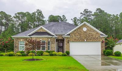 Conway Single Family Home For Sale: 273 Ridge Point Dr.