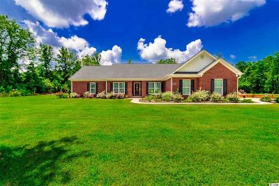 Conway Single Family Home For Sale: 4519 Long Avenue Ext.