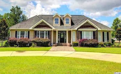 Conway Single Family Home For Sale: 4625 Long Avenue Ext.