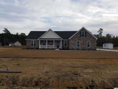 Conway Single Family Home For Sale: 417 Landing Rd.