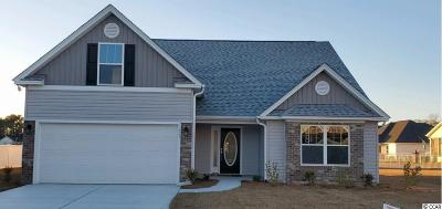 Conway Single Family Home For Sale: 1429 Channel View Dr.