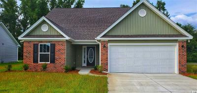 Conway Single Family Home For Sale: 283 Oak Landing Dr.