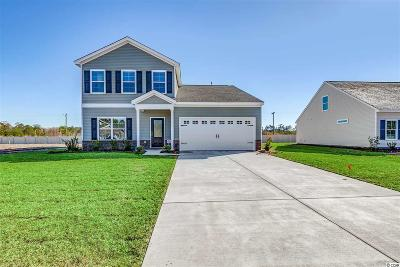 Conway Single Family Home For Sale: 336 Angler Ct.