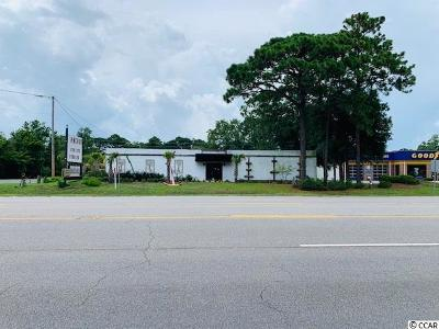 Georgetown County Commercial For Sale: 9529 Ocean Highway