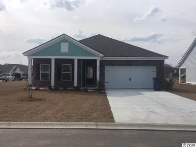 Single Family Home For Sale: 1450 Winyah Bay Winyah Bay Rd.
