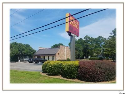Georgetown County Commercial For Sale: 13272 Highway 17
