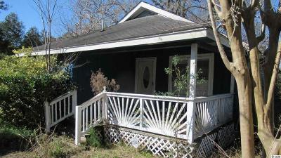 Georgetown Single Family Home For Sale: 181 Enterprise St.