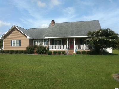 Georgetown Single Family Home For Sale: 713 Harrelson Rd.