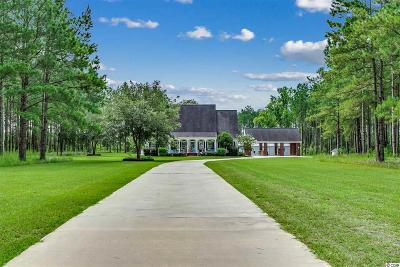 Georgetown County Single Family Home For Sale: 1876 Tyler Dr.