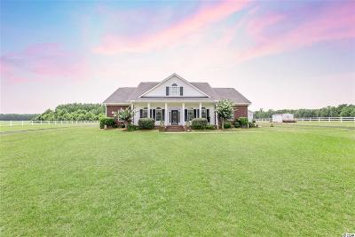 Conway Single Family Home Active Under Contract: 6837 Highway 134