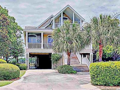 Georgetown County Single Family Home For Sale: 234 Inlet Point Dr.