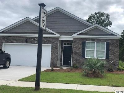 Myrtle Beach Single Family Home For Sale: 2815 Eclipse Dr.
