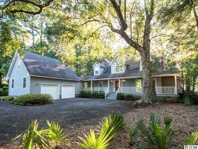Georgetown County Single Family Home For Sale: 522 Wallace Pate Dr.