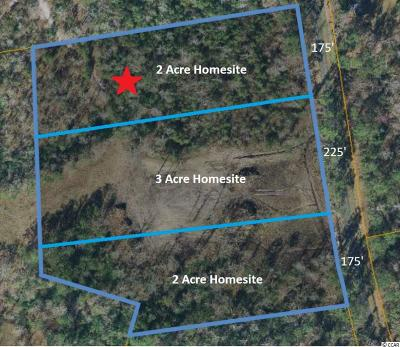 Horry County Residential Lots & Land For Sale: 2500 Highway 129