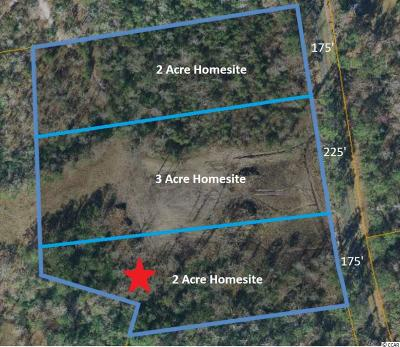 Horry County Residential Lots & Land For Sale: 2520 Highway 129