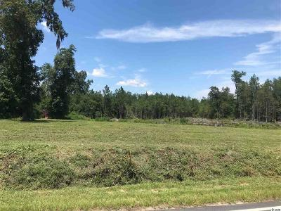 Horry County Residential Lots & Land For Sale: 1330 Pisgah Church Rd.