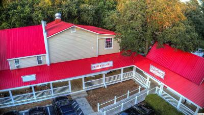 Georgetown County Commercial For Sale: 10744 Ocean Highway #Highway