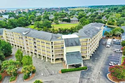 Georgetown County Condo/Townhouse For Sale: 14290 Ocean Hwy. #220