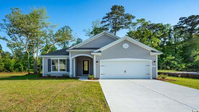 Georgetown County Single Family Home For Sale: 141 Castaway Key Dr.