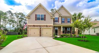 Georgetown County Single Family Home For Sale: 18 Cyclamen Ct.