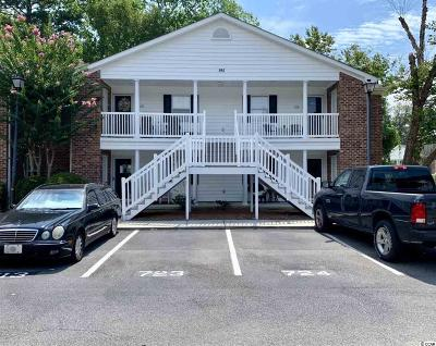Georgetown County Condo/Townhouse For Sale: 195 Egret Run #714