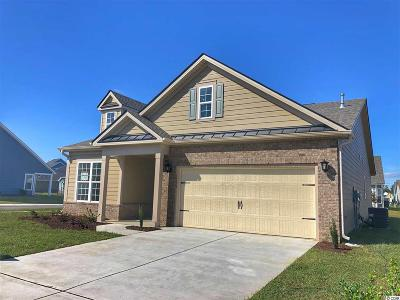Myrtle Beach Single Family Home For Sale: 1736 Parish Way