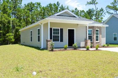 Conway Single Family Home For Sale: 3863 Stern Dr.
