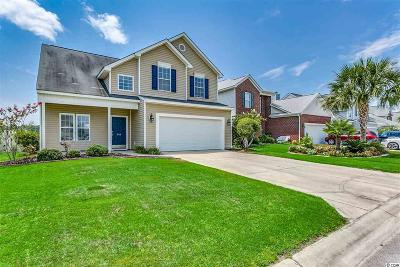 Myrtle Beach Single Family Home For Sale: 349 Skyland Pines Dr.