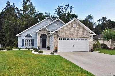 Murrells Inlet Single Family Home For Sale: 262 Southern Breezes Circle