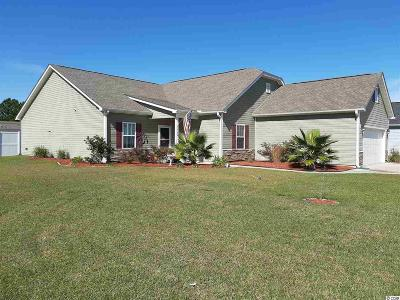 Little River Single Family Home For Sale: 596 Tourmaline Dr.