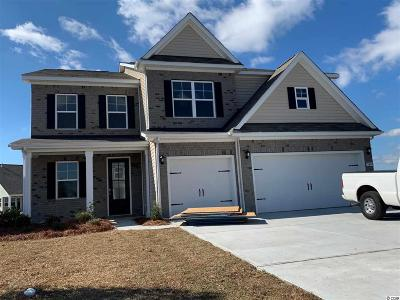 Myrtle Beach Single Family Home For Sale: 5009 Magnolia Village Way