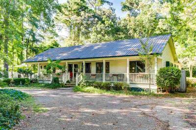 Georgetown County Single Family Home For Sale: 224 Old Serenity Dr.